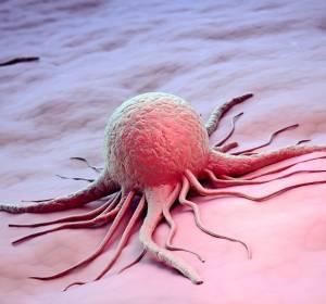 Auf Immuntherapie liegen im Kampf gegen Krebs die größten Hoffnungen