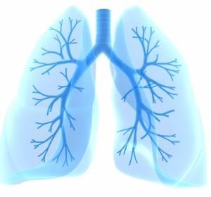 Lungenkrebszentrum+und+Kopf-Hals-Tumorzentrum+der+Universit%C3%A4tsmedizin+Greifswald+erstmals+zertifiziert