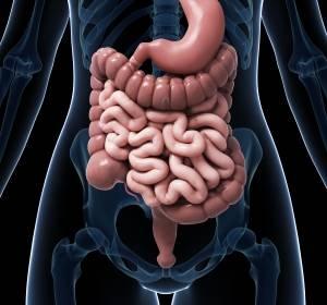 GI-Tumoren: Immunonkologische Therapiestrategien erfolgversprechend