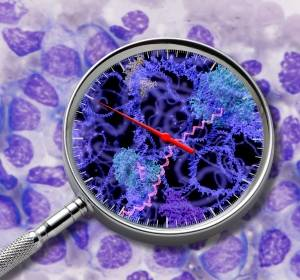 Methode zur Charakterisierung von Krebsgenen
