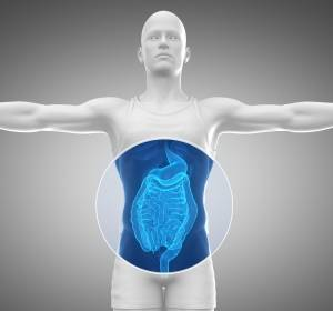 Darmkrebs: Antwort von Zellen auf replikativen Stress