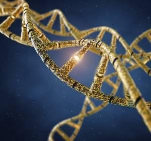 Nachweis von Lungenkrebs im Frühstadium aus cfDNA