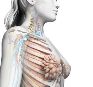 14 neue Brustkrebs-Risikogene entdeckt