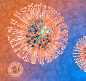 Wie Herpesviren das Immunsystem hintergehen