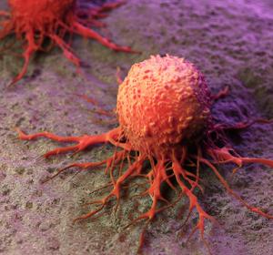 Die Wirkung von Medikamenten auf Krebszellen messen