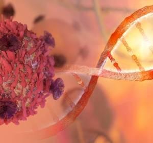 Verborgene Hinweise im Krebsgewebe