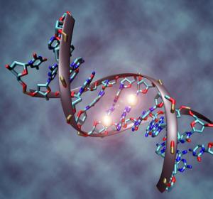 Epigenetische Analyse von aggressiven Hirntumoren: Eine neue Perspektive für die Präzisionsmedizin