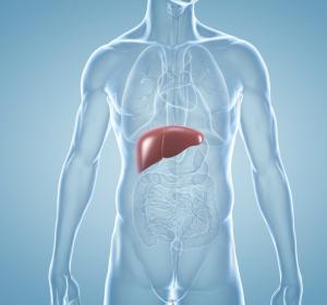 Status Lebergesundheit: Testen, therapieren und HCC vermeiden