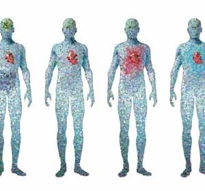 Einheitliche Standards für epigenetische Daten gefordert