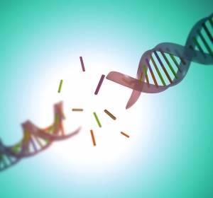 Hämatoonkologischer Assay zur Detektion neuer Mutationen und eindeutigeren Subgruppen-Zuordnung
