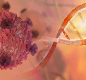 Schalter für Transkriptionsmechanismen in Krebszellen identifiziert