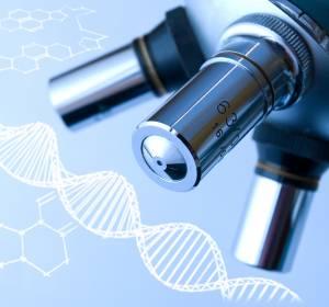 Molekulare Diagnostik ermöglicht präzisionsonkologische Therapien