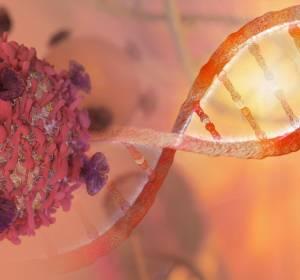 TRK-Fusionstumoren: Daten belegen hohe Ansprechraten von Larotrectinib bei Kindern und Erwachsenen