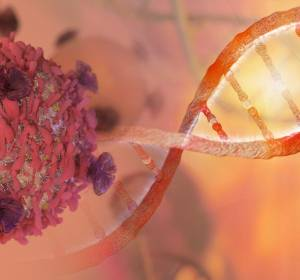 Genetik: Kleine RNA steuert Genaktivität