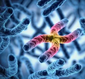 Darmkrebs: Wachstumssignale durch BRAF- oder KRAS-Mutation unterschiedlich
