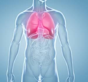 Lungenhochdruck: Zyklin-abhängige Kinasen in Gefäßwand Rationale für CDK-Inhibitor-Einsatz