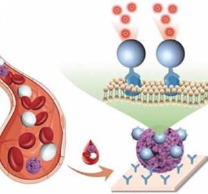 Direkter Nachweis von CTCs in Blutproben ohne Anreicherungsschritt