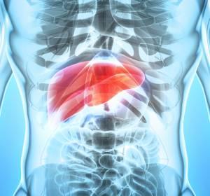 Phase-Ib-Studie GO30140: Vielversprechende Daten zu Atezolizumab + Bevacizumab beim HCC