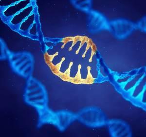 Neue Daten der TAILORx-Studie bestätigen Bedeutung des Oncotype DX Brustkrebstests für die Chemotherapie-Planung
