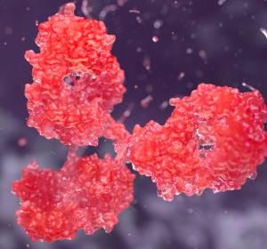 CAR-T-Zell-Therapie auf dem Weg in die Routine