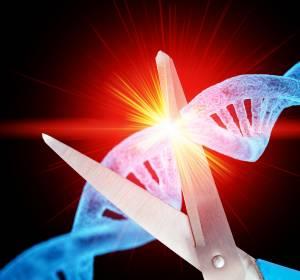 Thalassämie und Sichelzellanämie: Gentherapie CRISPR/Cas9 bei 2 Patientinnen erfolgreich