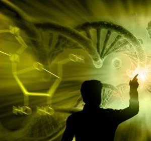 Personalisierte Medizin: Künstliche Intelligenz in der Transplantationsmedizin – Neue Vorhersagemodelle für Krankheitsverläufe