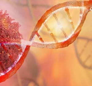 Mayo Clinic: Bibliothek mit genomisch sequenzierten Daten