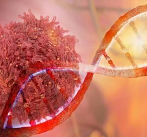 Suche nach Treiber-Gene über Algorithmen