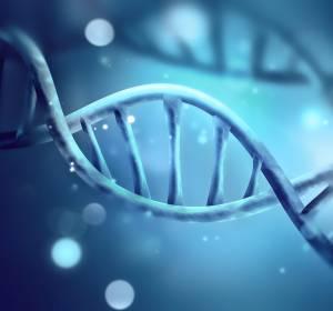 Seltene lysosomale Speichererkrankungen: Diagnostik Morbus Gaucher