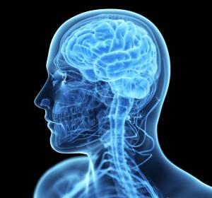 Hirntumoren: Individuelle Patientenversorgung