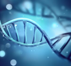 Neuentdeckter Mechanismus zur Pathogenese entzündlicher Erkrankungen