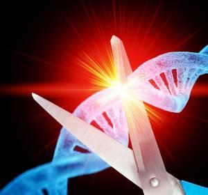Immunsensor TLR8: Mechanismus zur körpereigenen Abwehr könnte zu neuen Wirkstoffen in der Immunonkologie beitragen