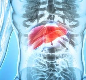 HCC: Neue Behandlungsoptionen durch Immuntherapie