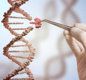 Multiples Myelom: Neuer genetischer Prädiktor gefunden