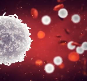 KEYNOTE-204: Pembrolizumab verlängert PFS nach autoSCT und bei nicht dafür geeigneten r/r cHL-Patienten