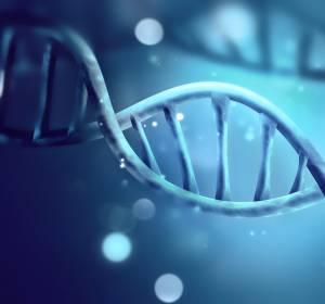 Gentherapien: Erfolge bei der Therapie genetischer Erkrankungen