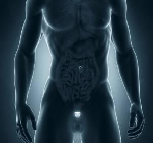 Hormontherapie beim Prostatakarzinom: Positives Wirkprofil von Triptorelin mehrfach bestätigt