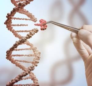 CRISPR/Cas9 – Genom Editing in der Onkologie und Hämatologie