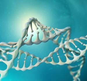 Präklinische Studie: Kombinationstherapie hemmt ATM-mutierten Pankreas-Tumor