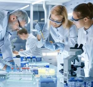 Bestimmung der Kinasen-Aktivität in intakten Zellen