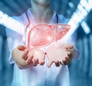 Leberzellkarzinom: Präklinische Studie mit induzierter Lipotoxizität erfolgreich