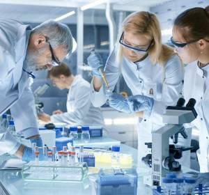 In vitro Veritas: Organ-on-a-Chip-Testsysteme für Entwicklung neuartiger Krebstherapien