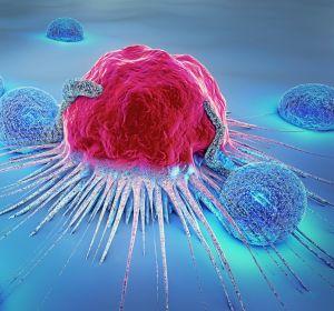 R%C3%A4umliche+Verteilung+von+Lymphozyten+und+Fibroblasten+zeigt+biologisch+relevante+Muster+bei+ER%2B+Brustkrebs