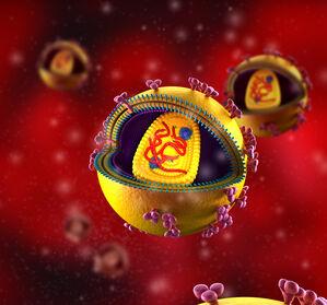 %E2%80%9EHuman+Cell+Atlas%E2%80%9C%3A+Kosteneffiziente+Methode+zur+Sequenzierung+von+Millionen+Einzelzellen