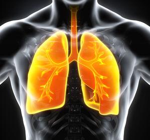 Lungenkrebs-Therapie%3A+Weniger+ist+mehr%3F+%284%2F5%29