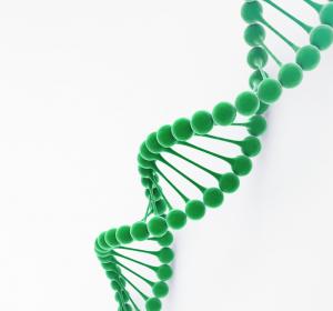 Brustkrebs-Genexpressionstest: Intermediate-RS-Fälle besser zuordnen