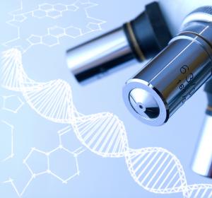 WHO nimmt Leukämie mit DDX41-Mutation als eigene Untergruppe in Klassifikation auf