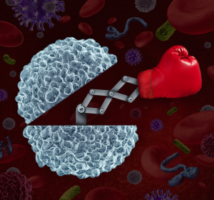 In-vitro-Modell für effektive Antikörper-Kombinationen gegen Tumoren