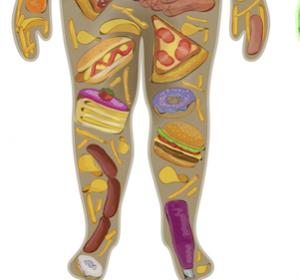 Zusammenhang mit Übergewicht für einige Krebsarten belegt