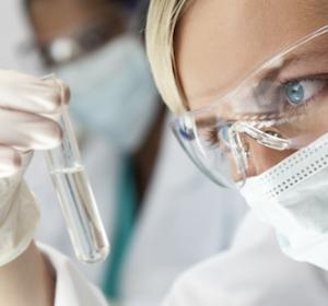 CML: Wissenschaftler untersuchen BCR-ABL-Substratmolekül LASP1